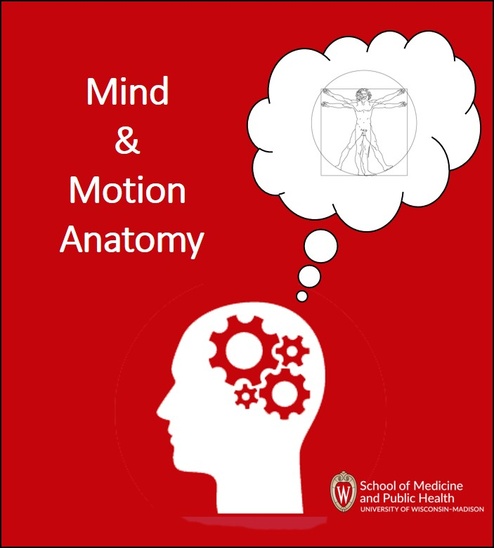 Cover image for Mind & Motion Anatomy