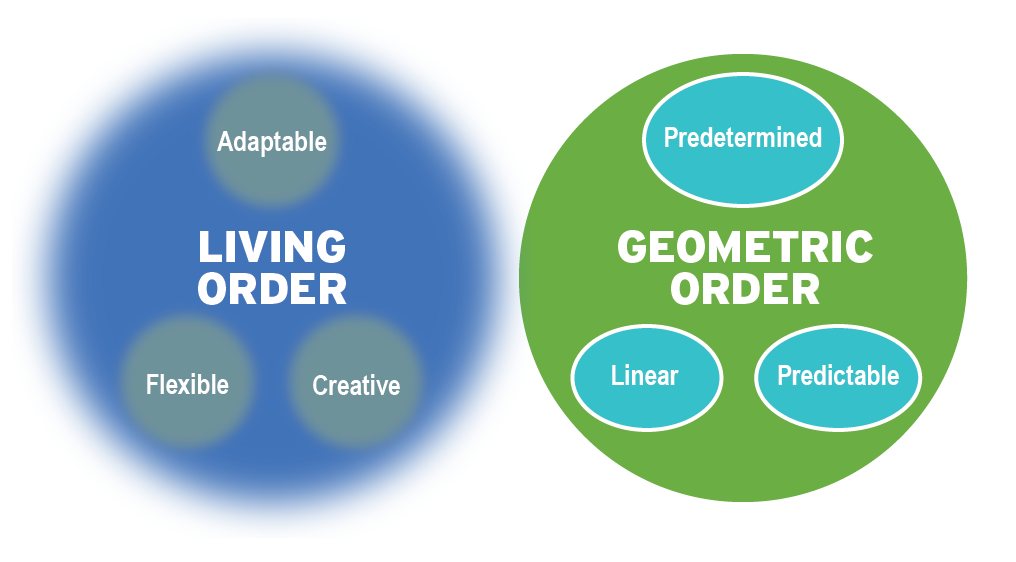 Figure 1-2: Characteristics of living order and geometric order