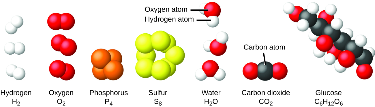 The hydrogen molecule, H subscript 2, is shown as two small, white balls bonded together. The oxygen molecule O subscript 2, is shown as two red balls bonded together. The phosphorous molecule, P subscript 4, is shown as four orange balls bonded tightly together. The sulfur molecule, S subscript 8, is shown as 8 yellow balls linked together. Water molecules, H subscript 2 O, consist of one red oxygen atom bonded to two smaller white hydrogen atoms. The hydrogen atoms are at an angle on the oxygen molecule. Carbon dioxide, C O subscript 2, consists of one carbon atom and two oxygen atoms. One oxygen atom is bonded to the carbon's right side and the other oxygen is bonded to the carbon's left side. Glucose, C subscript 6 H subscript 12 O subscript 6, contains a chain of carbon atoms that have attached oxygen or hydrogen atoms.