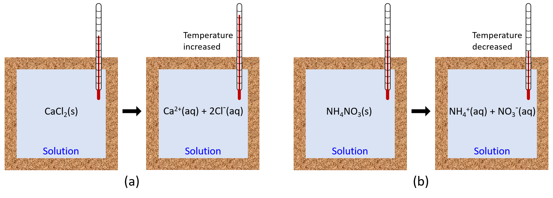 """Two diagrams labeled a and b are shown. Each is made up of two rectangular containers with a thermometer inserted into the top right and extending inside. There is a right facing arrow connecting each box in each diagram. The left container in diagram a depicts a solution with the term """"CaCl2(s)"""" written in the center. The label """"Solution"""" are written at the bottom of the container. The right container in diagram a has the term """"Ca2+(aq) + 2Cl-(aq)"""" written in the center and """"Solution"""" written at the bottom of the container. The phrase """"Temperature increased"""" is next to the thermometer. The left container in diagram b depicts a solution with the terms """"NH4NO3(s)"""" written in the center and """"Solution"""" written at the bottom. The right container in diagram b has the term"""