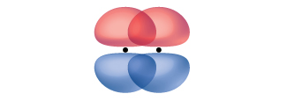 Two peanut-shaped orbitals are shown, lying vertically and parallel with one another. They overlap one another along the top and bottom of the orbital.