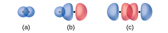 """Three diagrams are shown and labeled """"a,"""" """"b,"""" and """"c."""" Diagram a shows two spherical orbitals lying side by side and overlapping. Diagram b shows one spherical and one peanut-shaped orbital lying near one another so that the spherical orbital overlaps with one end of the peanut-shaped orbital. Diagram c shows two peanut-shaped orbitals lying end to end so that one end of each orbital overlaps the other."""