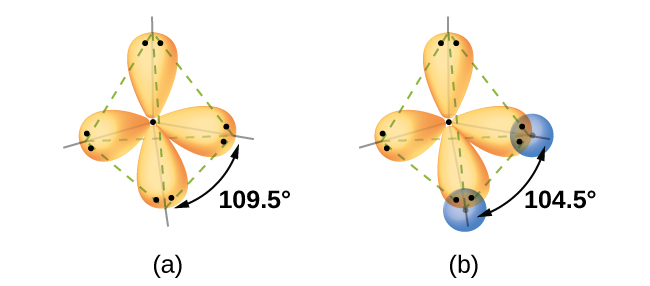 """Two diagrams are shown and labeled """"a"""" and """"b."""" Diagram a shows two peanut-shaped orbitals lying in a tetrahedral arrangement around the letter """"O."""" Diagram b shows the same two orbitals, but they now overlap to the top and to the left with two spherical orbitals, each labeled """"H."""" A pair of electrons occupies each lobe of the peanut-shaped orbitals."""