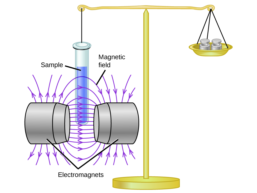 """A diagram depicts a stand supporting two objects that are held in balance by a horizontal bar. On the right, the bar supports a dish that is holding two weights. On the left there is a line attached to a test tube labeled, """"Sample tube."""" The test tube has been lowered into the space labeled, """"Magnetic field,"""" between two structures labeled, """"Electromagnets."""""""