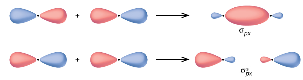 """Two horizontal rows of diagrams are shown. The upper diagram shows two equally-sized peanut-shaped orbitals with a plus sign in between them connected to a merged orbital diagram by a right facing arrow. The merged diagram has a much larger oval at the center and much smaller ovular orbitals on the edge. It is labeled, """"sigma subscript p x."""" The lower diagram shows two equally-sized peanut-shaped orbitals with a plus sign in between them connected to a split orbital diagram by a right facing arrow. The split diagram has a much larger oval at the outer ends and much smaller ovular orbitals on the inner edges. It is labeled, """"sigma subscript p x superscript asterisk""""."""