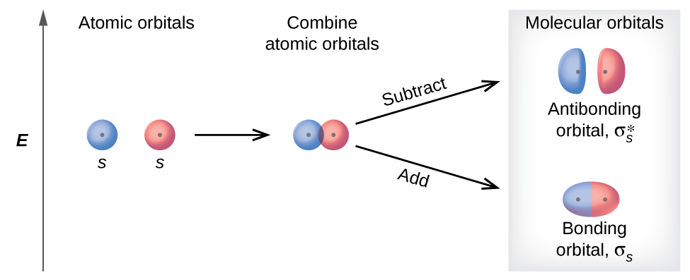"""A diagram is shown that depicts a vertical upward-facing arrow that lies to the left of all the other portions of the diagram and is labeled, """"E."""" To the immediate right of the midpoint of the arrow are two circles each labeled with a positive sign, the letter S, and the phrase, """"Atomic orbitals."""" These are followed by a right-facing horizontal arrow that points to the same two circles labeled with plus signs, but they are now touching and are labeled, """"Combine atomic orbitals."""" Two right-facing arrows lead to the last portion of the diagram, one facing upward and one facing downward. The upper arrow is labeled, """"Subtract,"""" and points to two oblong ovals labeled with plus signs, and the phrase, """"Antibonding orbitals sigma subscript s superscript asterisk."""" The lower arrow is labeled, """"Add,"""" and points to an elongated oval with two plus signs that is labeled, """"Bonding orbital sigma subscript s."""" The heading over the last section of the diagram are the words, """"Molecular orbitals."""""""
