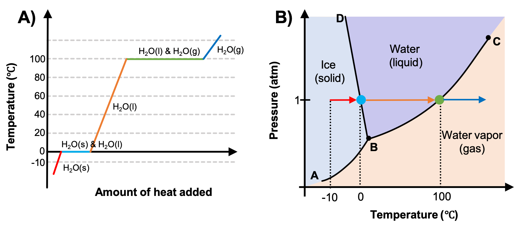 "This figure has a part ""A"" and ""B"". In part A, we see a heating curve for water. The Y axis is labeled ""Temperature (degrees Celsius)"" and the X axis is labeled ""Amount of heat added"". The data shows a red line that is labeled ""H2O(s)"" that start at -10 degrees celsius and increases to 0 degrees celsius. Then there is a light blue horizontal line that is labeled with ""H2O(s) & H2O(l)"" for the melting of ice. An orange line is labeled with ""H2O(l)"" as the liquid water is heated from 0 degrees to 100 degrees. A green horizontal line is labeled with ""H2O(l) & H2O(g)"" and represents the boiling of water. A dark blue line is labeled with ""H2O(g)"" and represents the temperature change of the gas after all the liquid has been vaporized. In part B of the figure, there is a phase diagram with the Y axis labeled ""Pressure (atm)"" and the X axis labeled ""Temperature (degrees Celsius)"". The typical phase diagram for water is shown. A line extends from the origin of the graph which is labeled ""A"" sharply upward to a point in the bottom third of the diagram labeled ""B"" where it branches into a line that slants slightly backward until it hits the highest point on the y-axis labeled ""D"" and a second line that extends to the upper right corner of the graph labeled ""C"". The two lines bisect the graph area to create three sections, labeled ""Ice (solid)"" near the middle left, ""Water (liquid)"" in the top middle and ""Water vapor (gas)"" near the bottom middle. A red arrow starts at the point (-10, 1) and points right toward increasing temperature. A dotted line extends downward to the x axis to indicate that it starts at -10 degrees celsius. This red arrow corresponds to the heating of the ice in part A of the figure which was also colored red. The arrow ends at the line that separates the solid and liquid. On the line between solid and liquid, there is a light blue dot that corresponds to the light blue dot on the heating curve as the ice melts. There is a dotted line that extends downward to 0 degrees from the light blue point. During this melting process, there is no arrow because the temperature remains constant. Then an orange arrow begins at 0 degrees and extends to the right until the phase boundary between liquid and gas. A green point is on this line, with a dotted line that extends to the x axis that shows that it exists at 100 degrees. This is the vaporization of the liquid and no temperature change occurs at this point. Then a dark blue arrow points to the right to indicate heating of the gas. The colors of the arrows and points correlate between the heating curve in part A and the phase diagram in part B."