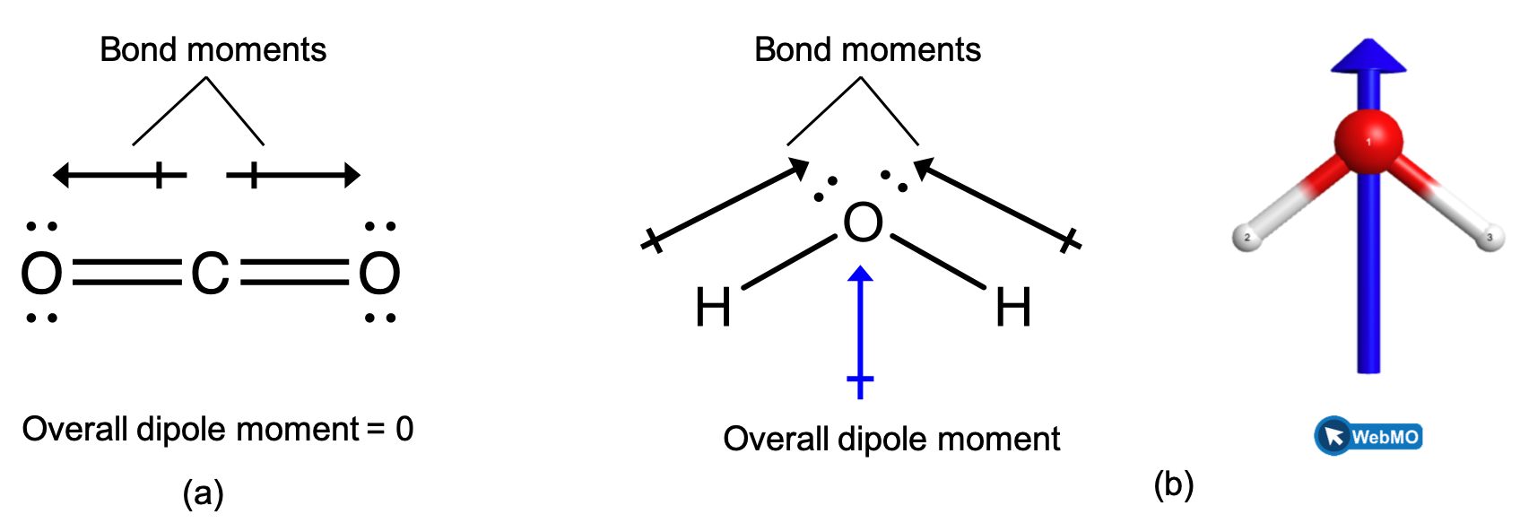 """Two images are shown and labeled, """"a"""" and """"b."""" Image a shows a carbon atom bonded to two oxygen atoms in a ball-and-stick representation. Two arrows face away from the center of the molecule in opposite directions and are drawn horizontally like the molecule. These arrows are labeled, """"Bond moments,"""" and the image is labeled, """"Overall dipole moment equals 0."""" Image b shows an oxygen atom bonded to two hydrogen atoms in a downward-facing v-shaped arrangement. An upward-facing, vertical arrow is drawn below the molecule while two upward and inward facing arrows are drawn above the molecule. The upper arrows are labeled, """"Bond moments,"""" while the image is labeled, """"Overall dipole moment."""""""