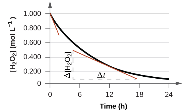 """A graph is shown with the label, """"Time ( h ),"""" appearing on the x-axis and """"[ H subscript 2 O subscript 2 ] ( mol L superscript negative 1)"""" on the y-axis. The x-axis markings begin at 0 and end at 24. The markings are labeled at intervals of 6. The y-axis begins at 0 and includes markings every 0.200, up to 1.000. A decreasing, concave up, non-linear curve is shown, which begins at 1.000 on the y-axis and nearly reaches a value of 0 at the far right of the graph around 10 on the x-axis. A red tangent line segment is drawn on the graph at the point where the graph intersects the y-axis. A second red tangent line segment is drawn near the middle of the curve. A vertical dashed line segment extends from the left endpoint of the line segment downward to intersect with a similar horizontal line segment drawn from the right endpoint of the line segment, forming a right triangle beneath the curve. The vertical leg of the triangle is labeled """"capital delta [ H subscript 2 O subscript 2 ]"""" and the horizontal leg is labeled, """"capital delta t."""""""