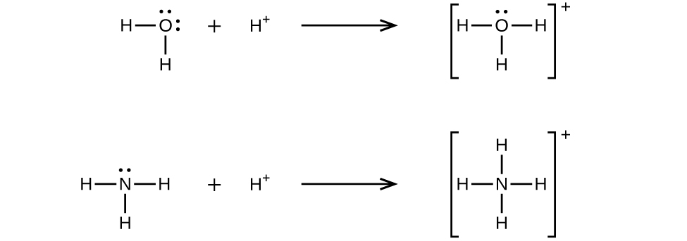 This figure shows two reactions represented with Lewis structures. The first shows an O atom bonded to two H atoms. The O atom has two lone pairs of electrons. There is a plus sign and then an H atom with a superscript positive sign followed by a right-facing arrow. The next Lewis structure is in brackets and shows an O atom bonded to three H atoms. There is one lone pair of electrons on the O atom. Outside of the brackets is a superscript positive sign. The second reaction shows an N atom bonded to three H atoms. The N atom has one lone pair of electrons. There is a plus sign and then an H superscript positive sign. After the H superscript positive sign is a right-facing arrow. The next Lewis structure is in brackets. It shows an N atom bonded to four H atoms. There is a superscript positive sign outside the brackets.