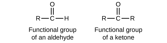 "Five structures are shown. The first is a C atom with an R group bonded to the left and an H atom to the right. An O atom is double bonded above the C atom. This structure is labeled, ""Functional group of an aldehyde."" The second structure shows a C atom with R groups bonded to the left and right. An O atom is double bonded above the C atom. This structure is labeled, ""Functional group of a ketone."" The third structure looks exactly like the functional group of a ketone. The fourth structure is labeled C H subscript 3 C H O. It is also labeled, ""An aldehyde,"" and ""ethanal (acetaldehyde)."" This structure has a C atom to which 3 H atoms are bonded above, below, and to the left. In red to the right of this C atom, a C atom is attached which has an O atom double bonded above and an H atom bonded to the right. The O atom as two sets of electron dots. The fifth structure is labeled C H subscript 3 C O C H subscript 2 C H subscript 3. It is also labeled, ""A ketone,"" and ""butanone."" This structure has a C atom to which 3 H atoms are bonded above, below, and to the left. To the right of this in red is a C atom to which an O atom is double bonded above. The O atom has two sets of electron dots. Attached to the right of this red C atom in black is a two carbon atom chain with H atoms attached above, below, and to the right."
