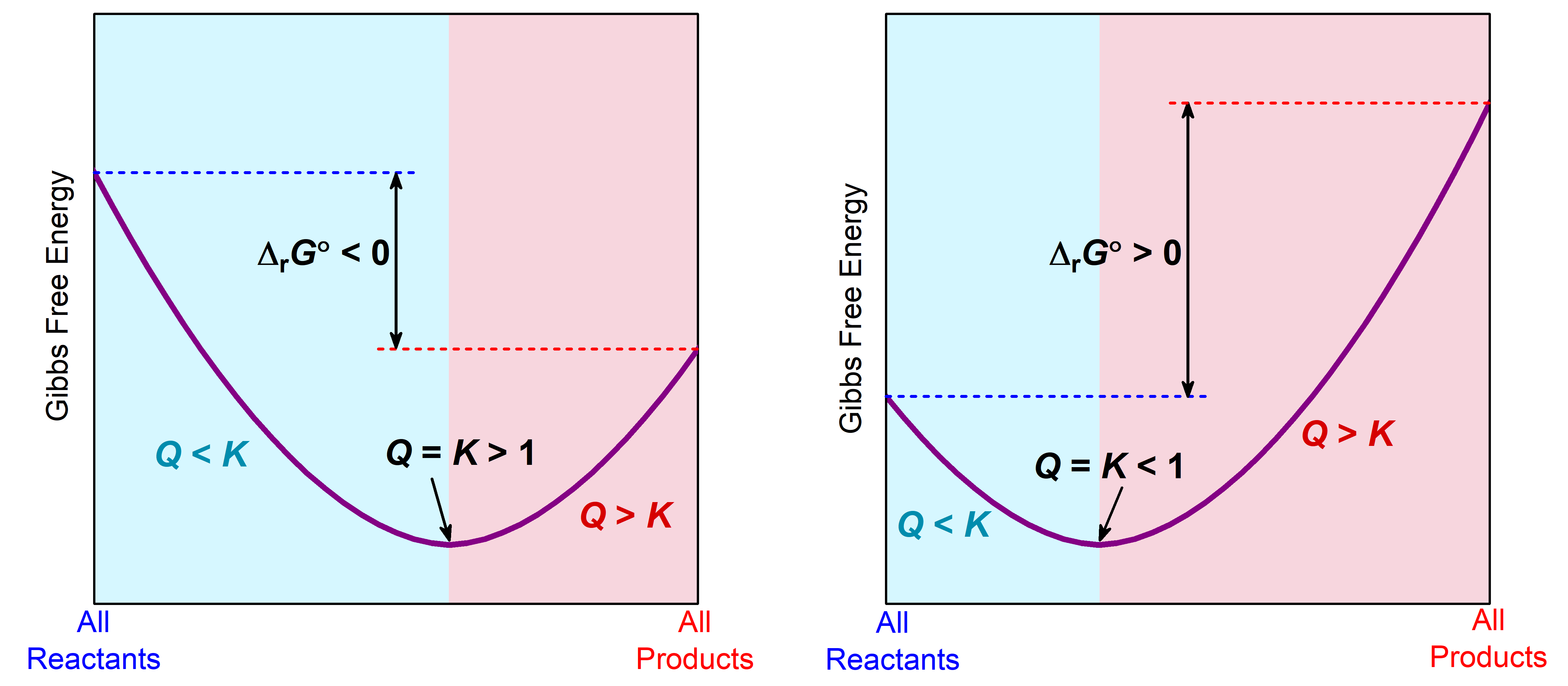 "Two graphs are shown where the y-axis is labeled ""Gibbs free energy"" while the x-axis is labeled ""All Reactants"" on the left and ""All Products"" on the right. In left graph, a line begins at the upper left side and goes steadily down to a point about two thirds of the way on the x-axis, then rises again to a point that is slightly lower than halfway up the y-axis. The distance between the beginning and ending points of the graph is labeled as, ""delta G naught less than 0,"" while the lowest point on the graph is labeled, ""Q equals K greater than 1."" In right graph, a line begins at the lower left side and goes steadily down to a point about one third of the way on the x-axis, then rises again to a point that is near the top of the y-axis. The distance between the beginning and ending points of the graph is labeled as, ""delta G naught greater than 0,"" while the lowest point on the graph is labeled, ""Q equals K less than 1."""