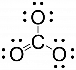 Lewis structure for CO3. Carbon is singly bonded to two carbons, and is double bonded to one carbon. All atoms have an octet of electrons.