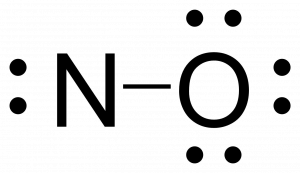 Rough lewis structure for NO. Nitrogen is singly bonded to oxygen. Nitrogen has one lone pair for a total of four electrons around it while oxygen has an octet.