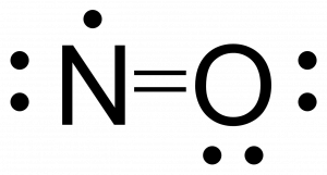 Completed lewis structure for NO. There are two bonds between nitrogen and oxygen, and the free radical is placed on the nitrogen.