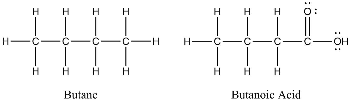 Two Lewis structures; the Lewis strucutre on the left is butane and the Lewis structure on the right is butanoic acid. . All bonds, lone pairs and atoms are shown in Lewis structures.