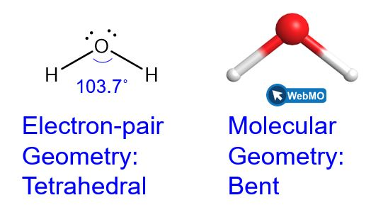 """Two representations of water are shown. In the Lewis structure on the left, the oxygen atom contains two lone pairs and then has a single bond to each of two hydrogen atoms. The label beneath reads """"electron-pair geometry: tetrahedral"""". The structure on the right is a ball and stick model that is a screenshot of the geometry as seen on Web M O. There is a red sphere in the middle for oxygen and then two white spheres in a bent geometry for the hydrogen atoms. The lone pairs are not represented in this structure. The label beneath it reads """"molecular geometry: bent""""."""