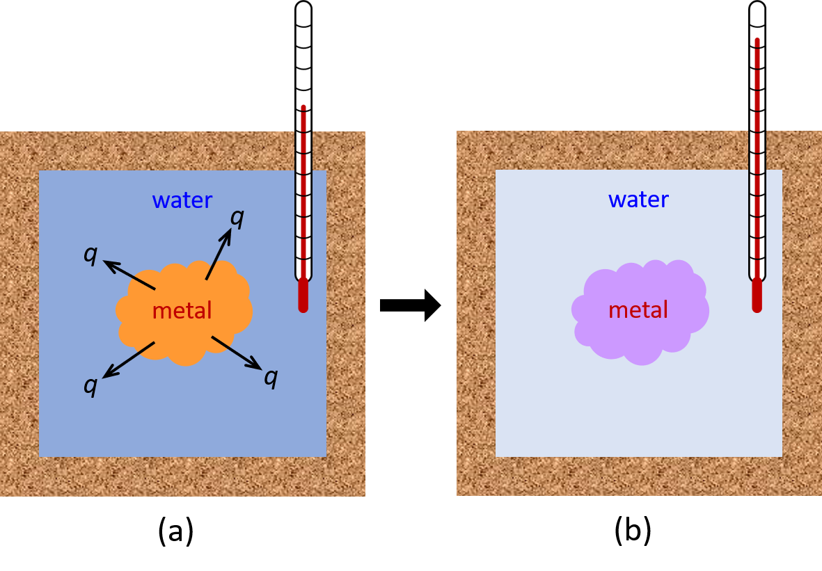 """Two diagrams are shown and labeled a and b. Each diagram is composed of a rectangular container with a thermometer inserted inside from the top right corner. Both containers are connected by a right-facing arrow. Both containers are full of water, and each container has a square in the middle which represents a metal. In diagram a, the metal is drawn in brown and has three arrows facing away from it. Each arrow has the letter """"q"""" at its end. The thermometer in this diagram has a relatively low reading. In diagram b, the metal is depicted in purple and the thermometer has a relatively high reading."""