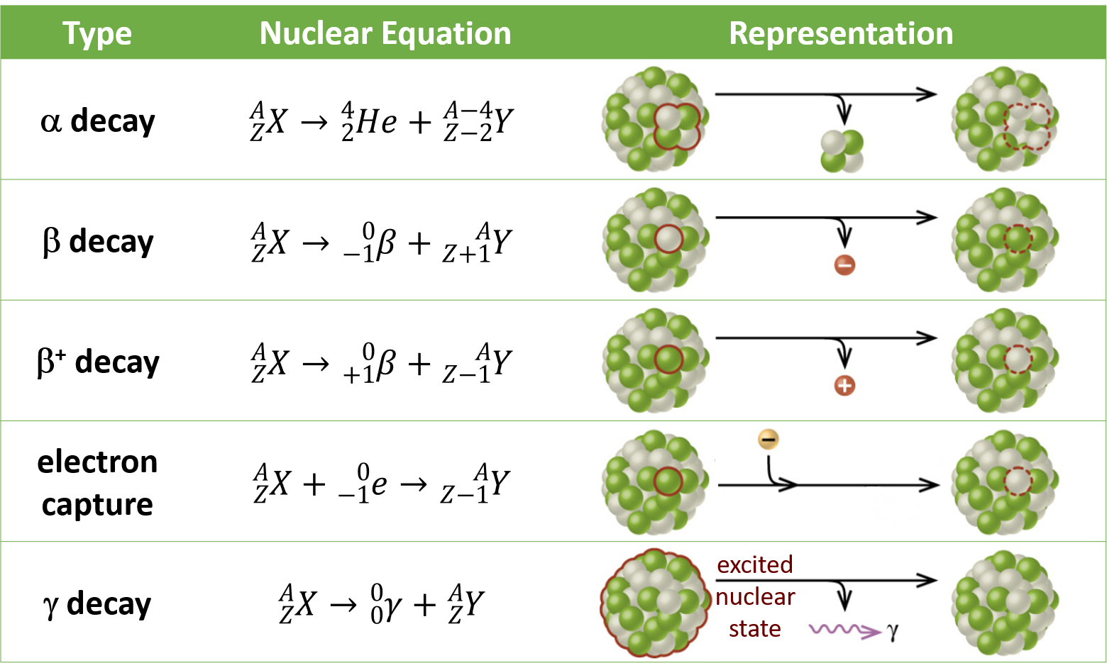 "This table has four columns and six rows. The first row is a header row and it labels each column: ""Type,"" ""Nuclear equation,"" and ""Representation."" Under the ""Type"" column are the following: ""Alpha decay,"" ""Beta decay,"" ""Positron emission,"" ""Electron capture,"" and ""Gamma decay."" Under the ""Nuclear equation"" column are several equations. Each begins with superscript A stacked over subscript Z X. There is arrow and then the following equations: ""superscript 4 stacked over subscript 2 He plus superscript A minus 4 stacked over subscript Z minus 2 Y,"" ""superscript 0 stacked over subscript negative 1 e plus superscript A stacked over subscript Z plus 1 Y,"" ""superscript 0 stacked over subscript 0 lowercase gamma plus superscript A stacked over subscript Z Y,"" ""superscript 0 stacked over subscript positive 1 e plus superscript A stacked over subscript Y minus 1 Y,"" and ""superscript 0 stacked over subscript negative 1 e plus superscript A stacked over subscript Y minus 1 Y."" Under the ""Representation"" column are the five diagrams. The first shows a cluster of green and white spheres. A section of the cluster containing two white and two green spheres is outlined. There is a right-facing arrow pointing to a similar cluster as previously described, but the outlined section is missing. From the arrow another arrow branches off and points downward. The small cluster to two white spheres and two green spheres appear at the end of the arrow. The next diagram shows the same cluster of white and green spheres. One white sphere is outlined. There is a right-facing arrow to a similar cluster, but the white sphere is missing. Another arrow branches off the main arrow and a red sphere with a negative sign appears at the end. The next diagram shows the same cluster of white and green spheres. One green sphere is outlined. There is a right-facing arrow to a similar cluster, but the green sphere is missing. Another arrow branches off the main arrow and a red sphere with a positive sign appears at the end. The next diagram shows the same cluster of white and green spheres. One green sphere is outlined. There is a right-facing arrow to a similar cluster, but the green sphere is missing. An arrow branch off the main arrow and shows a gold sphere with a negative sign joining with the right-facing arrow. The next diagram shows the same cluster of white and green spheres. The whole sphere is outlined and labeled, ""excited nuclear state."" There is a right-facing arrow that points to the same cluster. No spheres are missing. Off the main arrow is another arrow which points to a purple squiggle arrow which in turn points to a lowercase gamma."