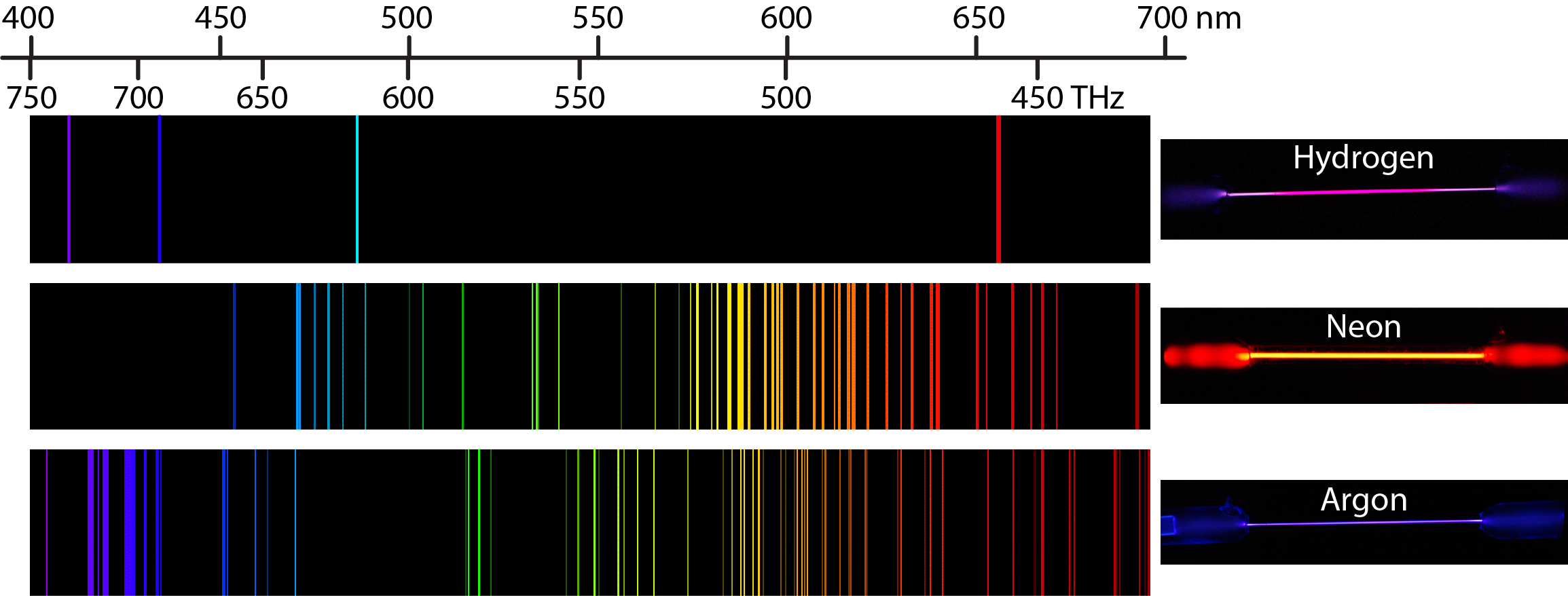 An image is shown with 3 rows. Across the top is a scale that begins at 400nm at the left and extends to 700nm to the right. The top row shows the emission spectrum for hydrogen. This spectrum shows single bands in the violet, indigo, blue, and orange regions. There is a hydrogen discharge lamp on the right showing the overall purple color. The second row shows the emission spectrum for neon. This spectrum shows many band in the visible spectrum, from blue to red, with a greater concentration of bands in the red and orange region. There is a neon discharge lamp on the right showing the overall orange color. The third row shows the emission spectrum for argon. This spectrum shows many bands in the visible spectrum, from indigo to red, with a greater concentration of bands in the blue and indigo region. There is an argon discharge lamp on the right showing the overall violet color. It is important to note that each of the color bands for the emission spectra of the elements matches to a specific wavelength of light. Extending a vertical line from the bands to the scale above or below the diagram will match the band to a specific measurement on the scale.