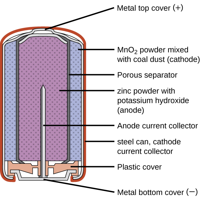 """A diagram of a cross section of an alkaline battery is shown. The overall shape of the cell is cylindrical. The lateral surface of the cylinder, indicated as a thin red line, is labeled """"Outer casing."""" Just beneath this is a thin, light grey surface that covers the lateral surface and top of the battery. Inside is a blue region with many evenly spaced small darker dots, labeled """"M n O subscript 2 (cathode)."""" A thin dark grey layer is just inside, which is labeled """"Ion conducting separator."""" A purple region with many evenly spaced small darker dots fills the center of the battery and is labeled """" zinc (anode)."""" The very top of the battery has a thin grey curved surface over the central purple region. The curved surface above is labeled """"Positive connection (plus)."""" At the base of the battery, an orange structure, labeled """"Protective cap,"""" is located beneath the purple and blue central regions. This structure holds a grey structure that looks like a nail with its head at the bottom and pointed end extending upward into the center of the battery. This nail-like structure is labeled """"Current pick up."""" At the very bottom of the battery is a thin grey surface that is held by the protective cap. This surface is labeled """"Negative terminal (negative)."""""""