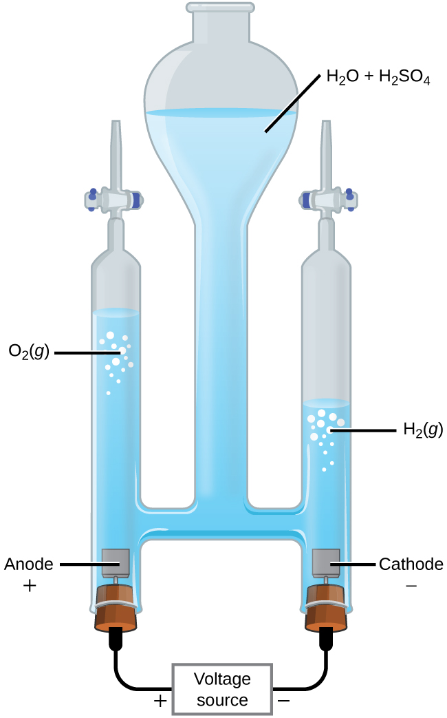 """This figure shows an apparatus used for electrolysis. A central chamber with an open top has a vertical column extending below that is nearly full of a clear, colorless liquid, which is labeled """"H subscript 2 O plus H subscript 2 S O subscript 4."""" A horizontal tube in the apparatus connects the central region to vertical columns to the left and right, each of which has a valve or stopcock at the top and a stoppered bottom. On the left, the stopper at the bottom has a small brown square connected just above it in the liquid. The square is labeled """"Anode plus."""" A black wire extends from the stopper at the left to a rectangle which is labeled """"Voltage source"""" on to the stopper at the right. The left side of the rectangle is labeled with a plus symbol and the right side is labeled with a negative sign. The stopper on the right also has a brown square connected to it which is in the liquid in the apparatus. This square is labeled """"Cathode negative."""" The level of the solution on the left arm or tube of the apparatus is significantly higher than the level of the right arm. Bubbles are present near the surface of the liquid on each side of the apparatus, with the bubbles labeled as """"O subscript 2 ( g )"""" on the left and """"H subscript 2 ( g )"""" on the right."""