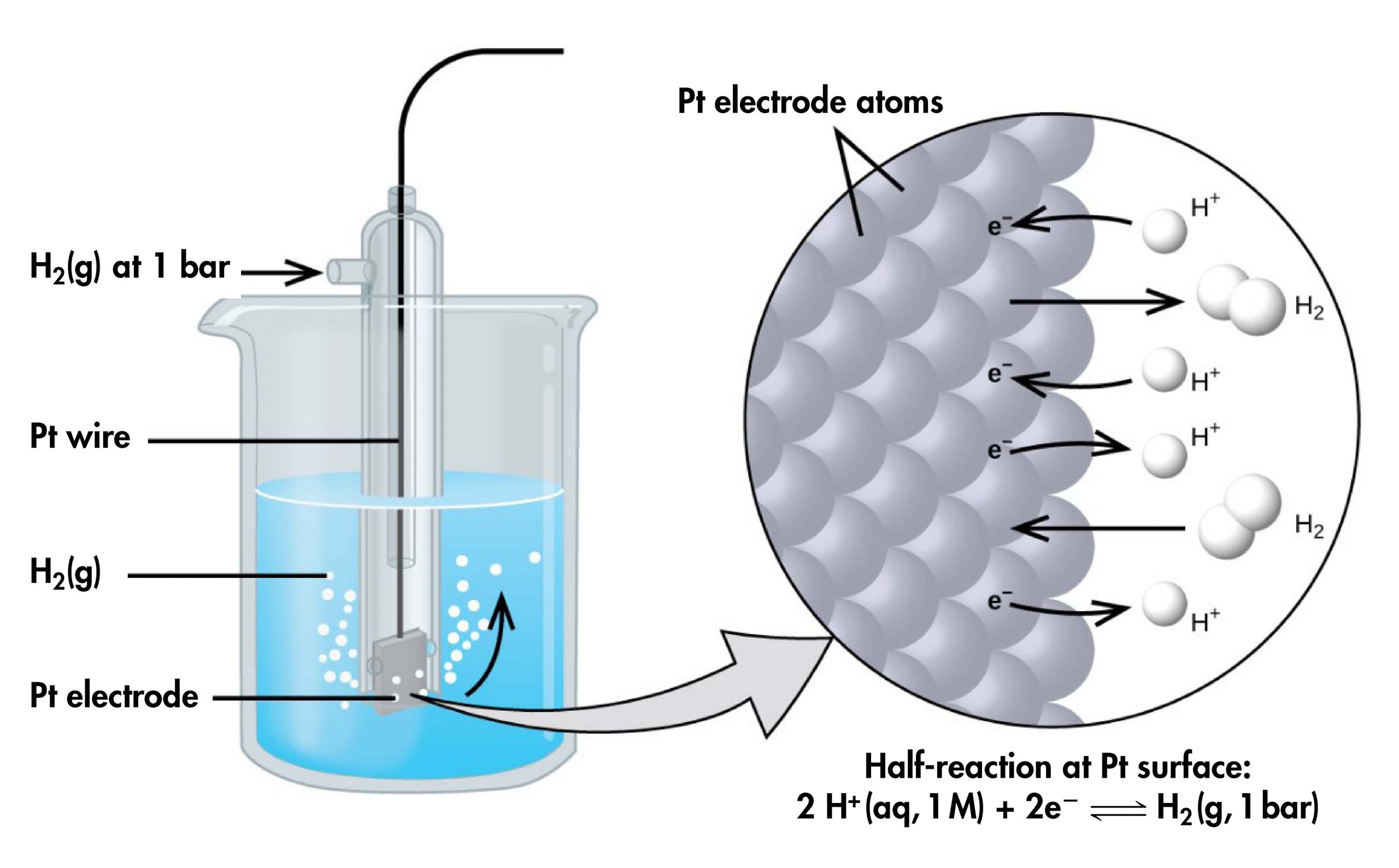 """The figure shows a beaker just over half full of a blue liquid. A glass tube is partially submerged in the liquid. Bubbles, which are labeled """"H subscript 2 ( g )"""" are rising from the dark grey square, labeled """"P t electrode"""" at the bottom of the tube. A curved arrow points up to the right, indicating the direction of the bubbles. A black wire which is labeled """"P t wire"""" extends from the dark grey square up the interior of the tube through a small port at the top. A second small port extends out the top of the tube to the left. An arrow points to the port opening from the left. The base of this arrow is labeled """"H subscript 2 ( g ) at 1 b a r ."""" A light grey arrow points to a diagram in a circle at the right that illustrates the surface of the P t electrode in a magnified view. P t atoms are illustrated as a uniform cluster of grey spheres which are labeled """"P t electrode atoms."""" On the grey atom surface, the label """"e superscript negative"""" is shown 4 times in a nearly even vertical distribution to show electrons on the P t surface. A curved arrow extends from a white sphere labeled """"H superscript plus"""" at the right of the P t atoms to the uppermost electron shown. Just below, a straight arrow extends from the P t surface to the right to a pair of linked white spheres which are labeled """"H subscript 2."""" A curved arrow extends from a second white sphere labeled """"H superscript plus"""" at the right of the P t atoms to the second electron shown. A curved arrow extends from the third electron on the P t surface to the right to a white sphere labeled """"H superscript plus."""" Just below, an arrow points left from a pair of linked white spheres which are labeled """"H subscript 2"""" to the P t surface. A curved arrow extends from the fourth electron on the P t surface to the right to a white sphere labeled """"H superscript plus."""" Beneath this atomic view is the label """"Half-reaction at P t surface: 2 H superscript plus ( a q, 1 M ) plus 2 e superscript negative right pointing arrow H subs"""