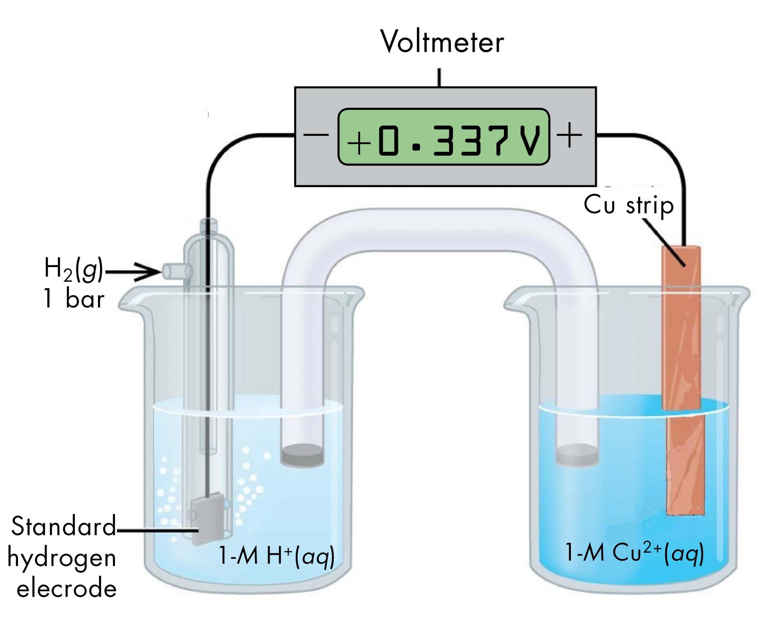 """This figure contains a diagram of an electrochemical cell. Two beakers are shown. Each is just over half full. The beaker on the left contains a clear, colorless solution and is labeled below as """"1 M H superscript plus."""" The beaker on the right contains a blue solution and is labeled below as """"1 M C u superscript 2 plus."""" A glass tube in the shape of an inverted U, a salt bridge, connects the two beakers at the center of the diagram. The tube contents are colorless. The ends of the tube are beneath the surface of the solutions in the beakers and a small grey plug is present at each end of the tube. The beaker on the left has a glass tube partially submersed in the liquid. Bubbles are rising from a grey square, labeled """"Standard hydrogen electrode"""", at the bottom of the tube. A black wire extends from the grey square up the interior of the tube through a small port at the top to a rectangle with a digital readout of """"positive 0.337 V"""" which is labeled """"Voltmeter."""" The wire connects to the negative terminal of the voltmeter. A second small port extends out the top of the tube to the left. An arrow points from the left to the port opening. The base of this arrow is labeled """"H subscript 2 ( g ) 1 bar."""" The beaker on the right has an orange-brown strip that is labeled """"C u strip"""" at the top. A wire extends from the top of this strip to the voltmeter, connecting to the positive terminal. The solution in the right beaker is labeled """"1-M H superscript plus."""""""